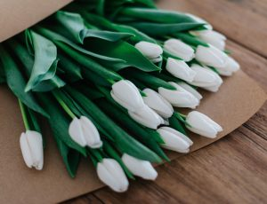 our-fav-flowers