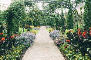 Signature Gardens