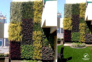 vertical-garden-design-hdfc-bank