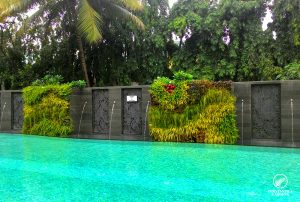 vertical-garden-design-sahara-star-4