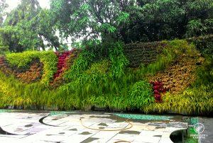 vertical-garden-design-sahara-star-3