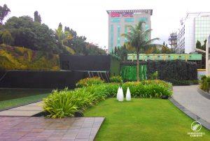 garden-maintenance-sahara-star-3