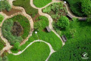 garden-landscape-execution-ashok-tower-1