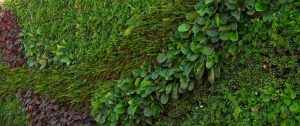 vertical-garden-ease-of-access