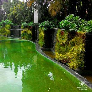 vertical-garden-design-sahara-star-1