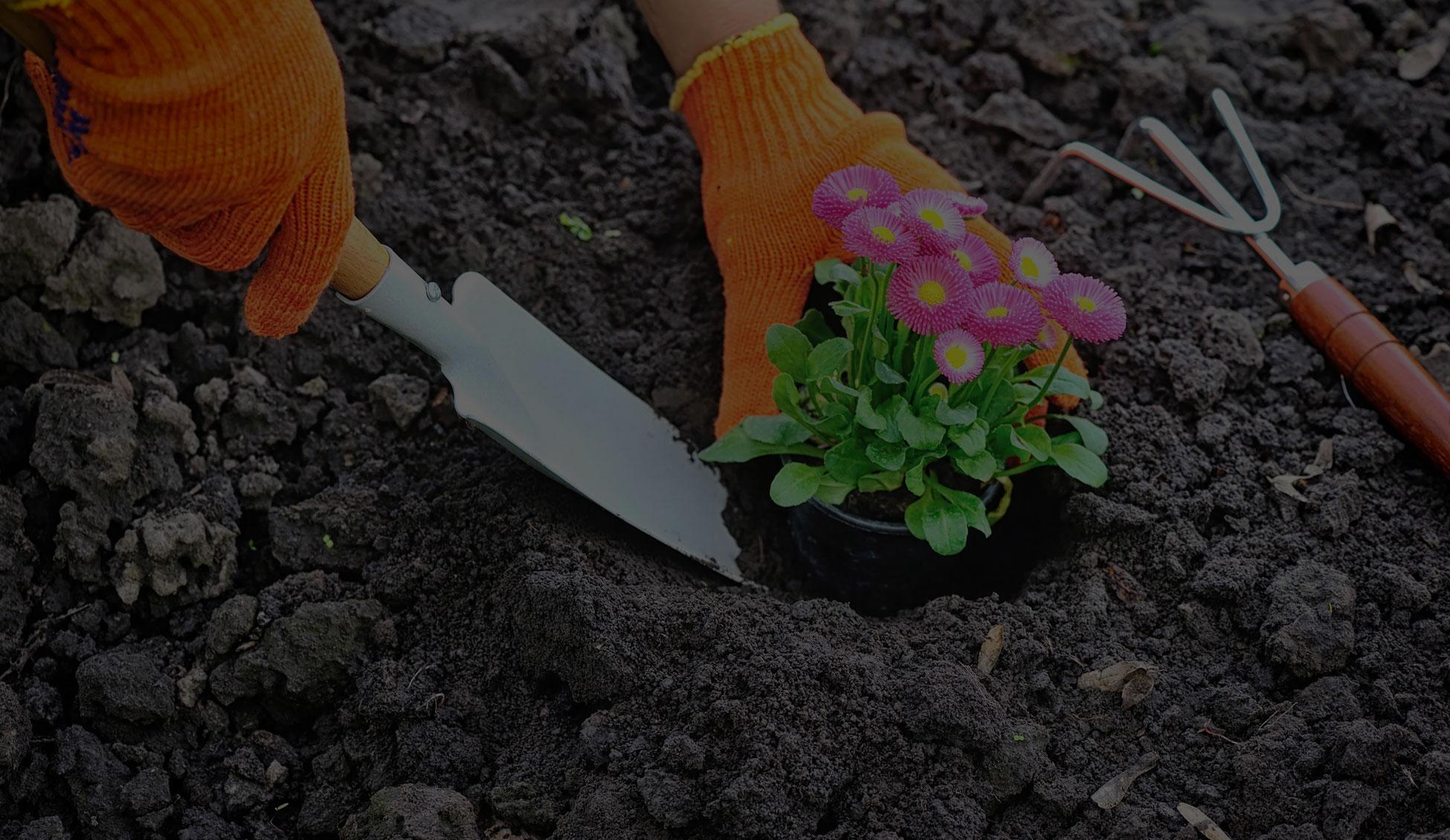 garden-landscape-execution-services