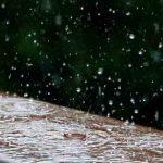 harvest-rainwater-for-gardening