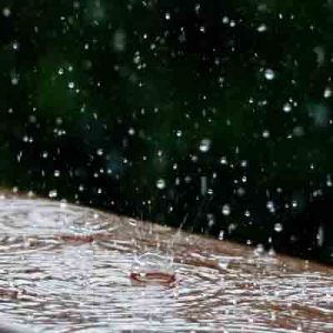 harvest-rainwater-for-gardening