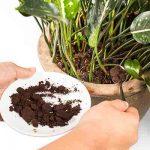 composting-can-work-wonders