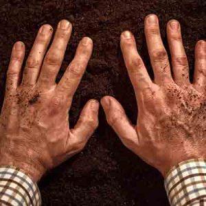 mulch-it-well