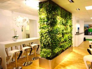 divider-vertical-garden