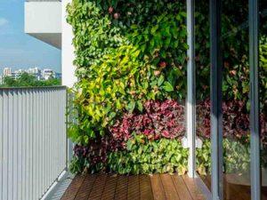 outdoor-vertical-garden
