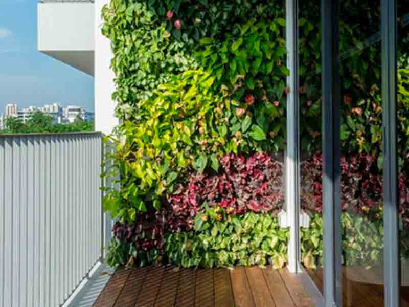 outdoor-vertical-garden