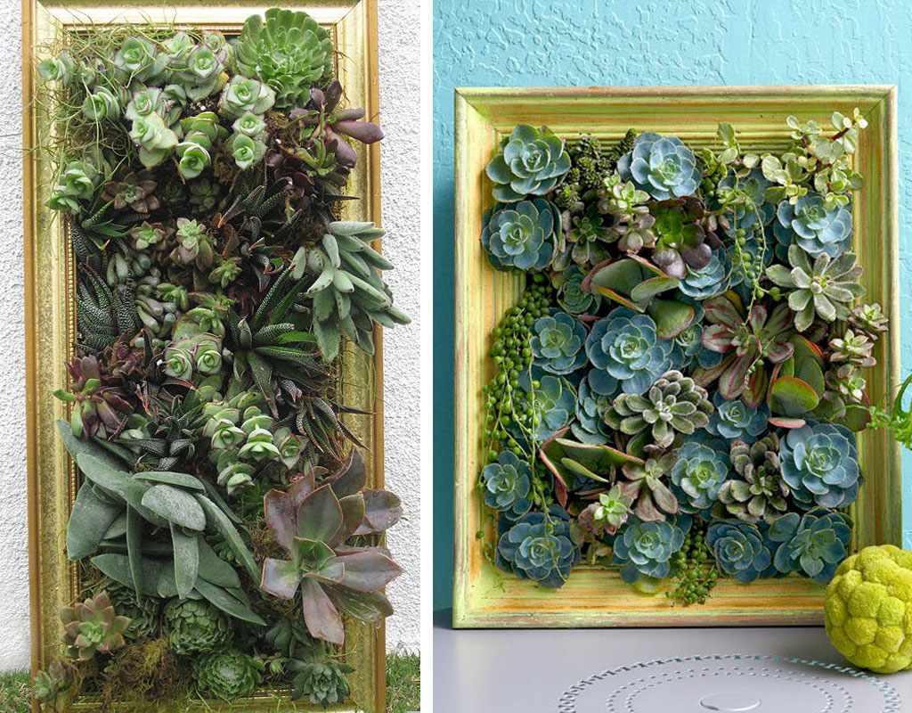 Vertical-Garden-Ideas-painting-a-garden