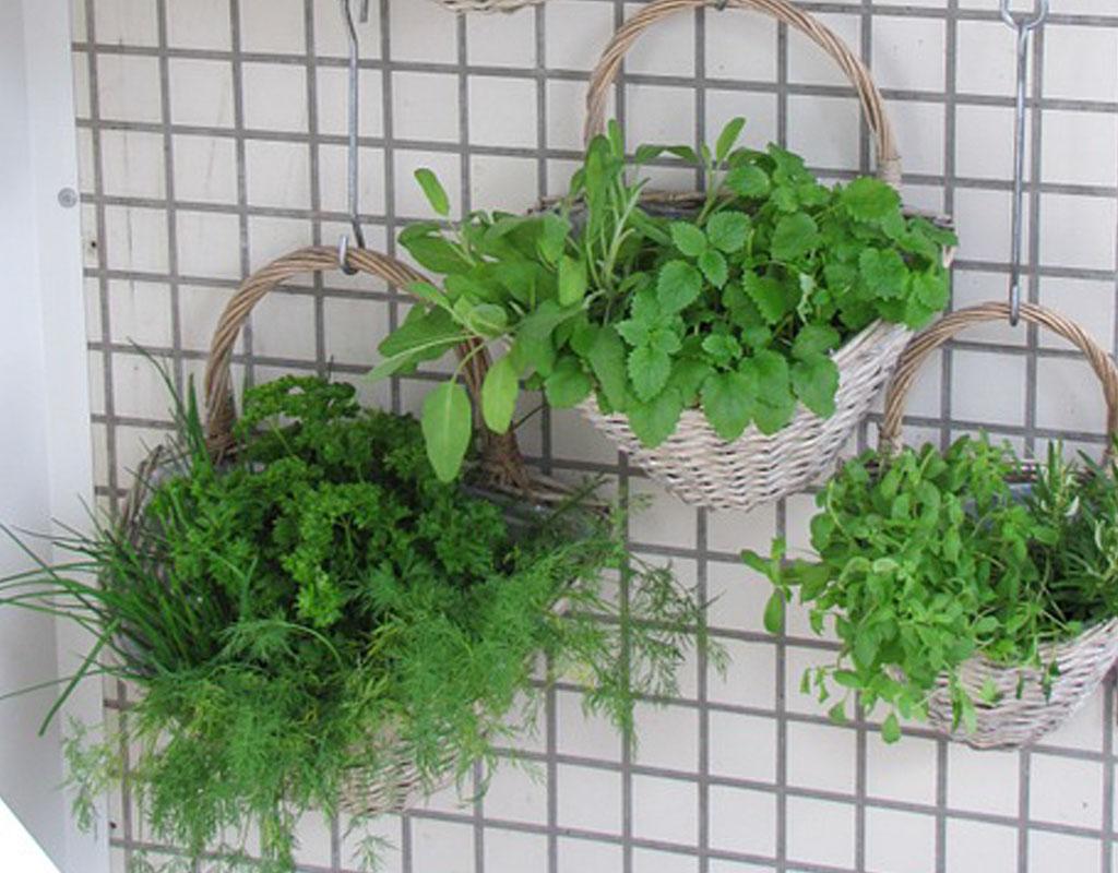 Vertical-Garden-Ideas-spice-herb-garden