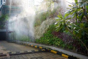 vertical-gardens-care